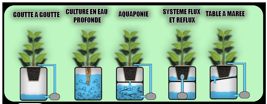 tous les systèmes hydroponiques